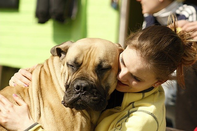 woman with companion dog