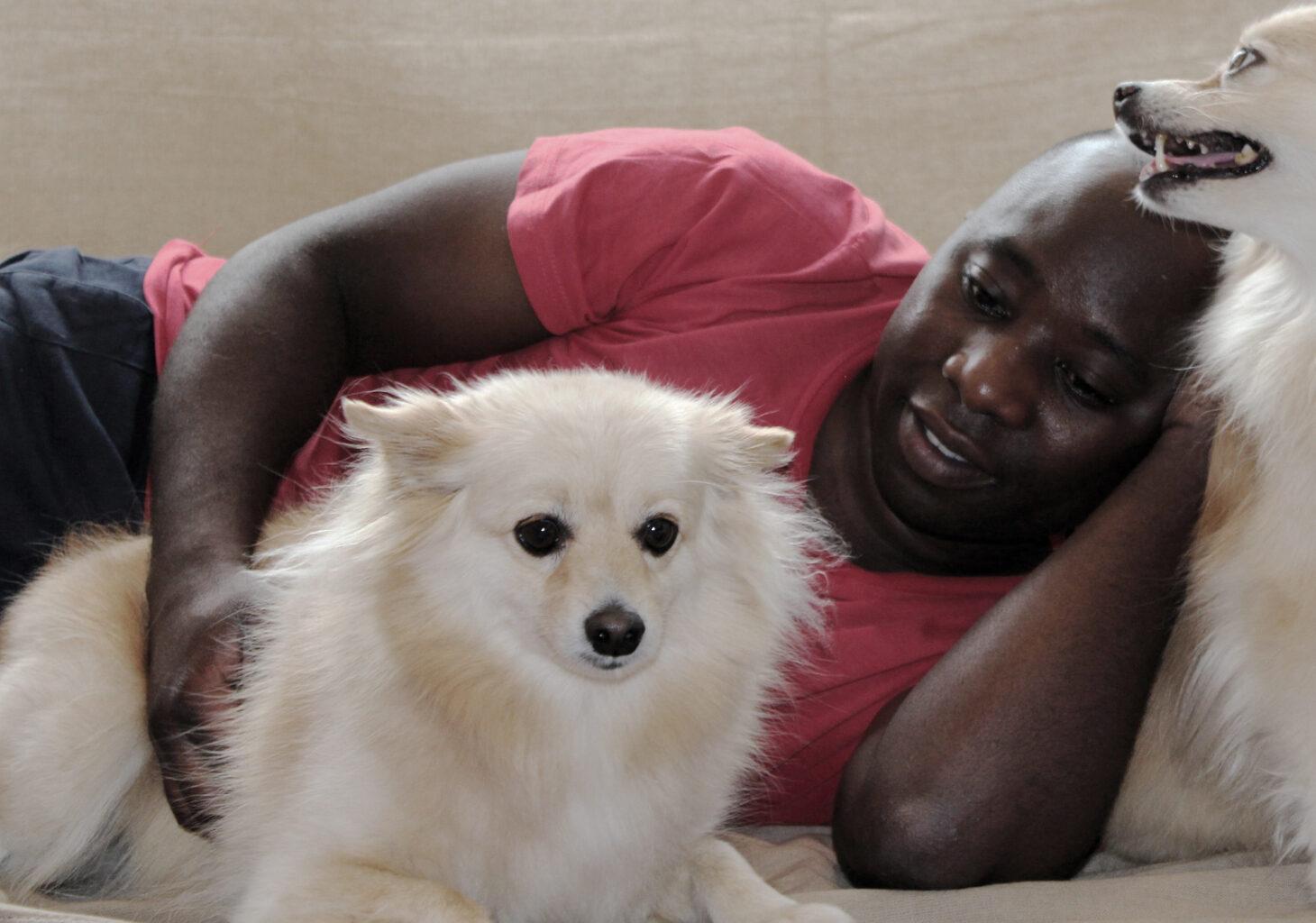 man-and-companion-dogs