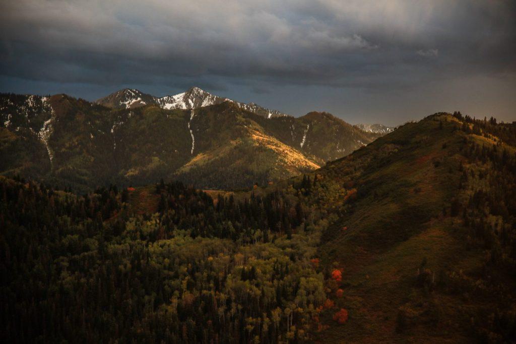 west elt mountains