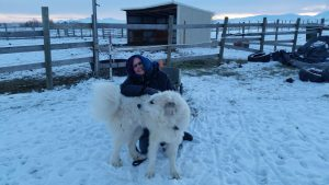 woman and large white dog in the snow